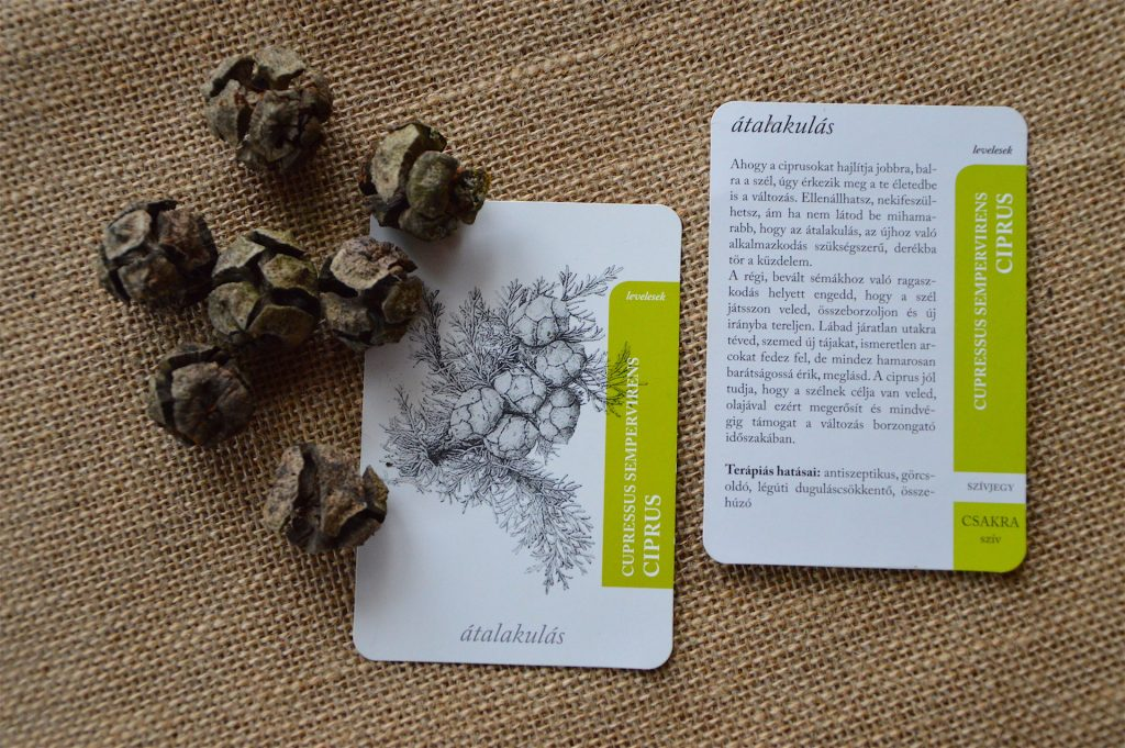 Personal Scent Card series from Aroma Botanica